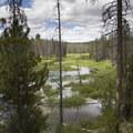 About halfway to Elk Meadows, the trail passes an oxbow meander of Elk Creek.- Elk Meadow + Elizabeth Lake