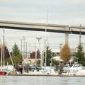 The space needle as seen below the West Seattle Bridge in the Duwamish Waterway.- Duwamish Waterway Sea Kayaking
