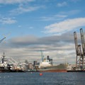 Container ships line the banks near the Port of Seattle along Harbor Island.- Duwamish Waterway Sea Kayaking