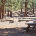 Sites are large at Big Springs Campground. - Big Springs Campground