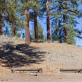 Big Springs Campground is situated in the world's largest Jeffrey pine forest.- Big Springs Campground