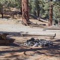 Big Springs Campground.- Big Springs Campground