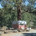 A camper at Big Springs Campground.- Big Springs Campground