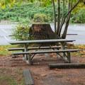 Picnic area at Wallace Falls Campground.- Wallace Falls Campground