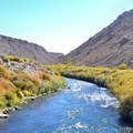 Owens River.- Upper Owens River and Pleasant Valley Reservoir