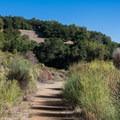 Almaden Quicksilver County Park.- Almaden Quicksilver County Park Historic Trail