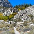 View up Big Pine Creek Canyon toward First Falls.- First Falls Day Hike