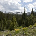 There are a few openings that provide nice views along the Trapp Creek Trail.- Marten + Kelly Lake, Bench Creek Divide