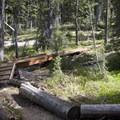 Nice bridges span the creek crossings toward the head of Trapp Creek canyon.- Marten + Kelly Lake, Bench Creek Divide