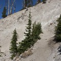 A narrow switchback leading from the west to east Sand Mountain Divide.- Edith Lake and Sand Mountain Divide
