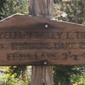 Trail sign at the junction above Edith Lake.- Edith Lake and Sand Mountain Divide