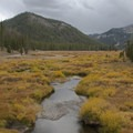 "Fall colors in the Salmon River Headwaters.- Smiley Creek to Big Smoky ""Loop"""