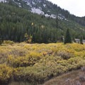 "Fall color in the West Fork of Big Smoky Creek.- Smiley Creek to Big Smoky ""Loop"""