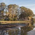 Moran Lake Park.- Moran Lake Park