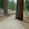 John Muir Trail.- Half Dome Hike via John Muir Trail