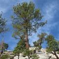A hiker provides a sense of scale on the Half Dome hike.- Half Dome Hike via John Muir Trail
