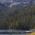 Thick lodgepole pine forests carpet the north shore of Hell Roaring Lake.- Hell Roaring Lake