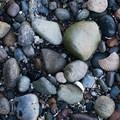 Rocks and shells litter the beach on Cutts Island.- Cutts Island Sea Kayaking