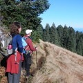 Be sure to stop and enjoy the views if you hike Marys Peak on a clear day.- Marys Peak via East Ridge