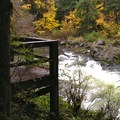 Viewing platform located above the falls.- Sol Duc River Salmon Cascades
