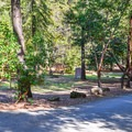 Road through the campground.- Uvas Canyon County Park Campground