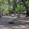 Campground in Uvas Canyon County Park.- Uvas Canyon County Park Campground