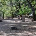 Campground in Uvas Canyon County Park.- Uvas Canyon County Park Campground