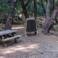 Every campsite in Uvas Canyon County Park Campground has a bear-proof containter for foods, lotions, and cosmetics.- Uvas Canyon County Park Campground