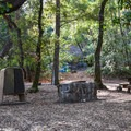 Typical site in Uvas Canyon County Park Campground.- Uvas Canyon County Park Campground