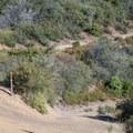 The trailhead for the Knob Trail.- Knibbs Knob
