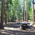Typical campsite at General Creek Campground.- General Creek Campground