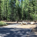 ADA-accessible campsite at General Creek Campground.- General Creek Campground