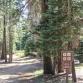 The General Creek Trail is open to hiking, mountain biking, and in winter, cross-country sking and snowshoeing.- General Creek Campground