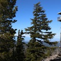 Flag Point Fire Lookout from the ground. - Flag Point Fire Lookout