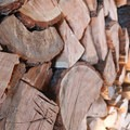 The shed is stocked with plenty of wood to keep you warm in the lookout.- Flag Point Fire Lookout
