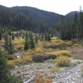 Fall colors and a rocky section of trail along Alturas Lake Creek.- Johnson Creek to North Fork of the Ross Fork