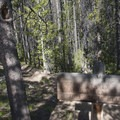 Junction with the spur to Bench Lakes.- Redfish Lake Loop, Grand Mogul Trail to Bench Lakes