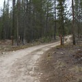 "FS-037 goes to the Mays Creek ""trailhead,"" while FS-315 goes to the Hell Roaring Trailhead.- McDonald Lake to Mays Creek"