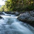 Sol Duc River Salmon Cascades.- Sol Duc River Salmon Cascades