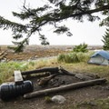Backcountry campsites at Cape Alava.- Ozette Triangle Loop Trail