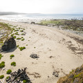 Sand Point, Olympic National Park.- Ozette, North Sand Point Trail