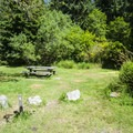 Typical campsite at Ozette Campground.- Ozette Campground
