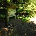 Ozette Campground.- Ozette Campground