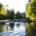 Sol Duc River at Klahowya Campground.- Klahowya Campground
