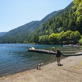 Fairholme Beach and swimming area at Lake Crescent.- Lake Crescent, Fairholme Beach