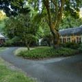 Lake Crescent Lodge and cabins.- Lake Crescent Lodge