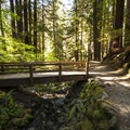 Sol Duc River Trail.- Sol Duc Falls