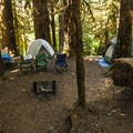 Loop B walk-in campsites at Sol Duc Campground.- Sol Duc Campground