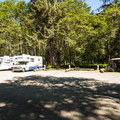 RV sites at Sol Duc River Campground.- Sol Duc Campground