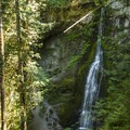 Marymere Falls, Olympic National Park.- Marymere Falls Hike